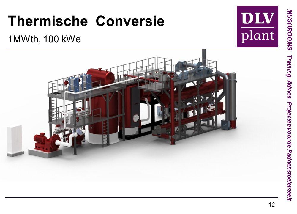 Thermische Conversie 1MWth, 100 kWe