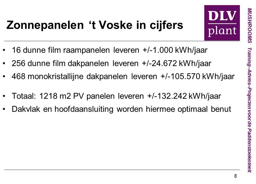 Zonnepanelen 't Voske in cijfers