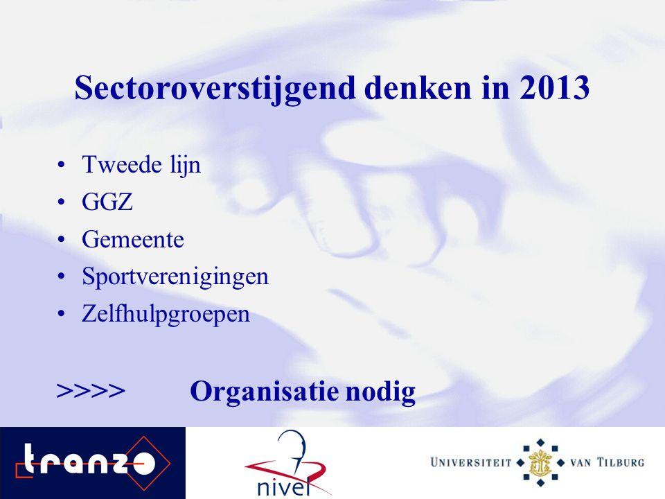 Sectoroverstijgend denken in 2013
