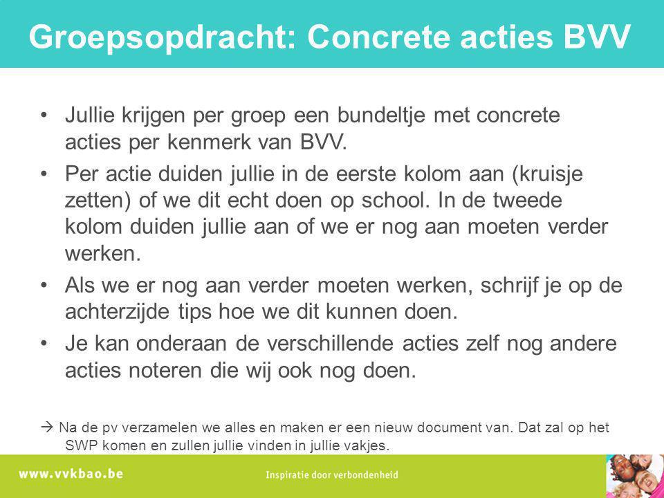 Groepsopdracht: Concrete acties BVV