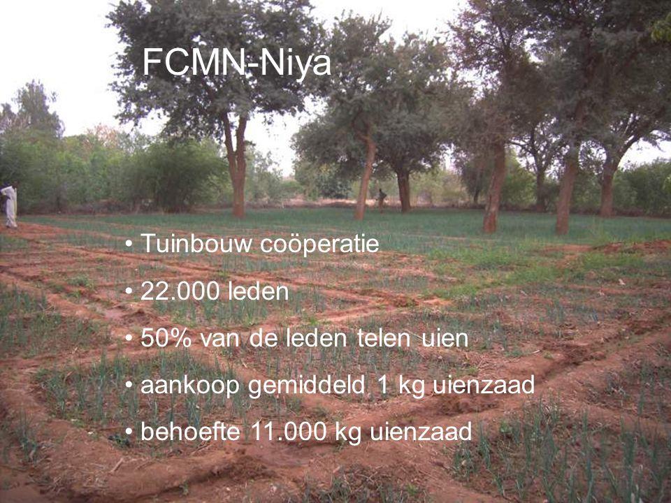 FCMN-Niya Tuinbouw coöperatie 22.000 leden 50% van de leden telen uien