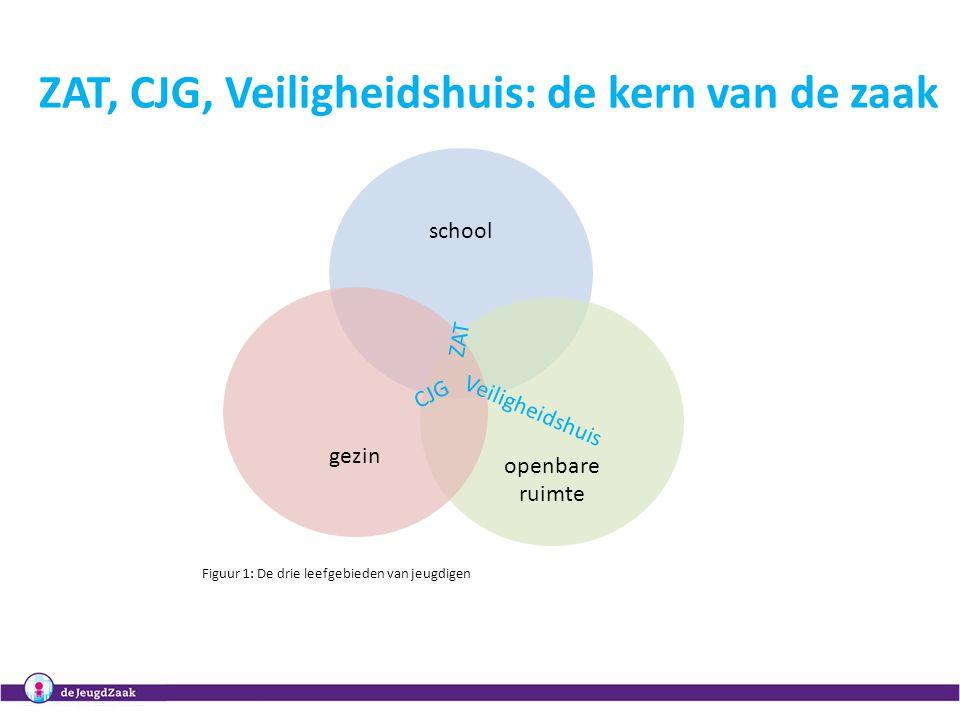 Regionale masterclasses Het organiseren van samenwerking in het CJG