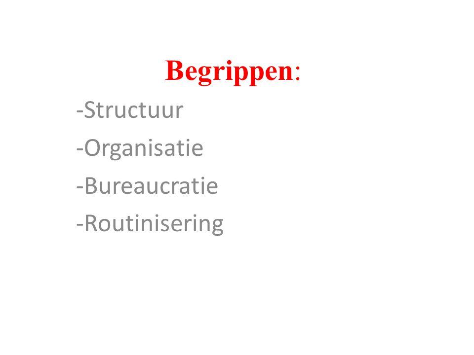 Structuur Organisatie Bureaucratie Routinisering