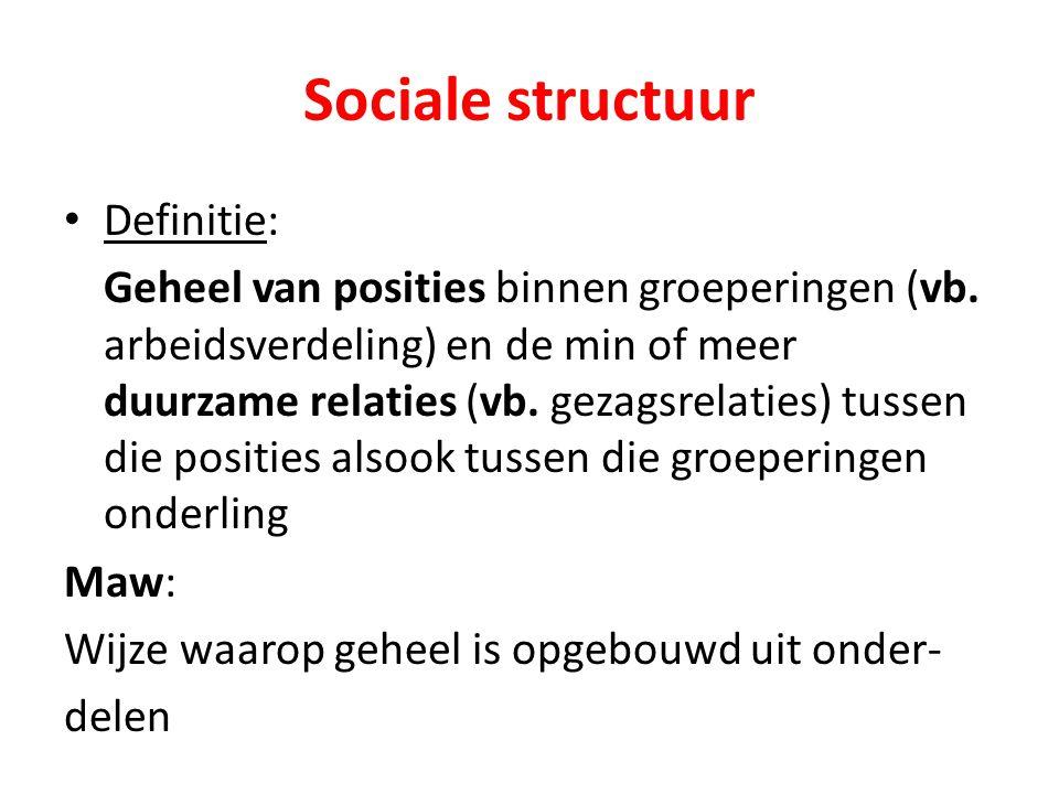 Sociale structuur Definitie: