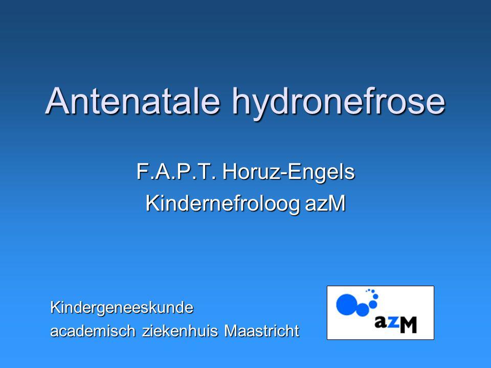 Antenatale hydronefrose
