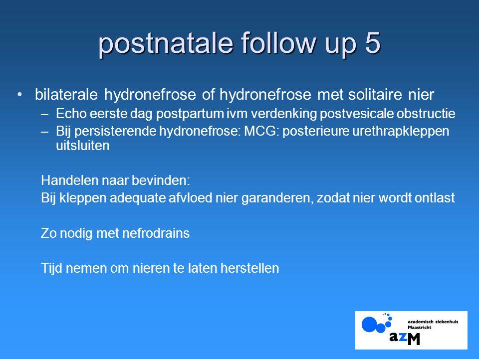 postnatale follow up 5 bilaterale hydronefrose of hydronefrose met solitaire nier. Echo eerste dag postpartum ivm verdenking postvesicale obstructie.