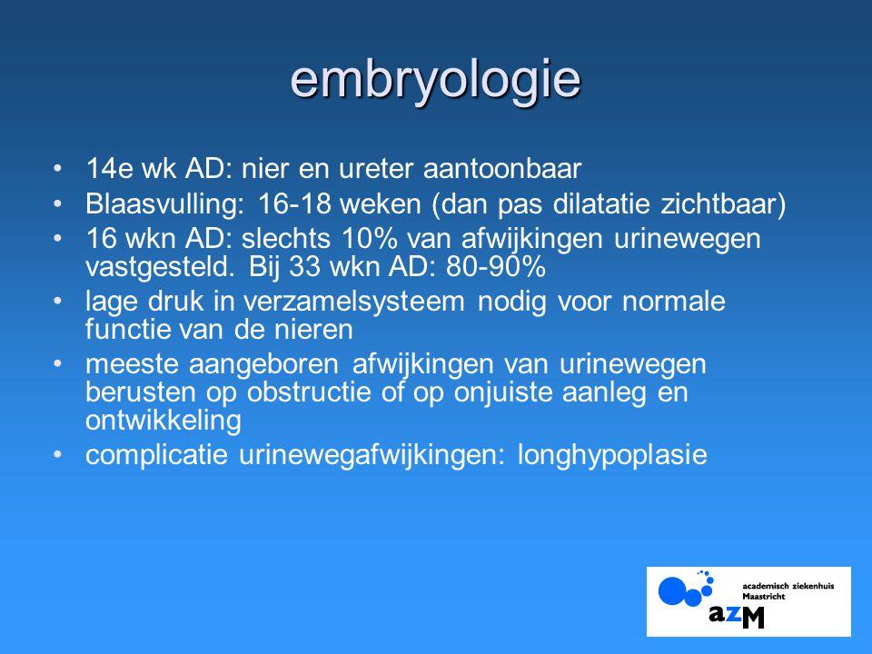 embryologie 14e wk AD: nier en ureter aantoonbaar