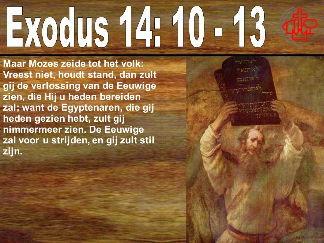 Exodus 14: 10 - 13