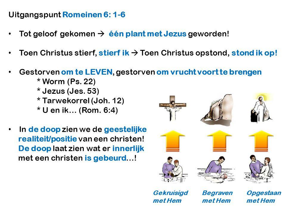 Uitgangspunt Romeinen 6: 1-6