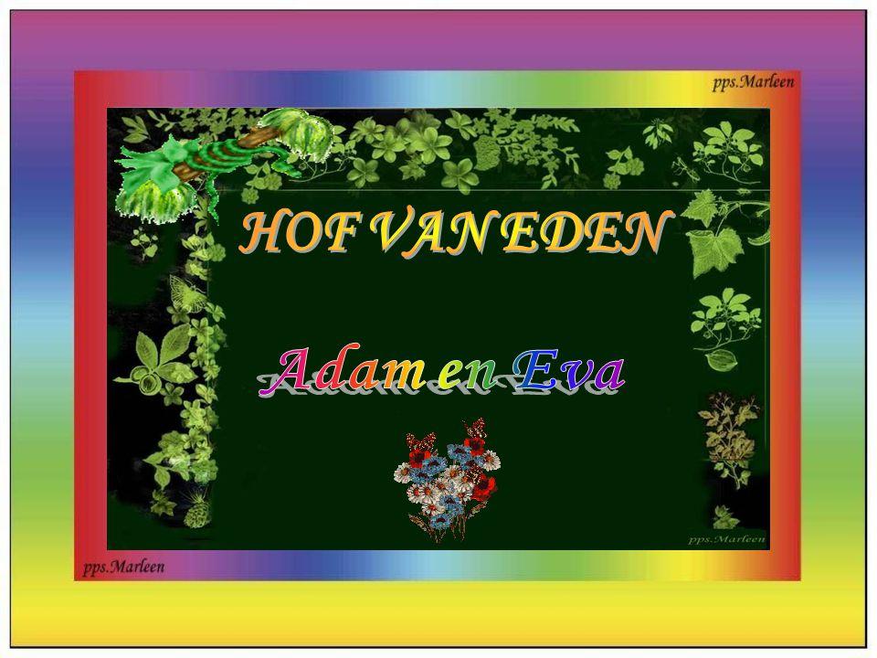 HOF VAN EDEN Adam en Eva