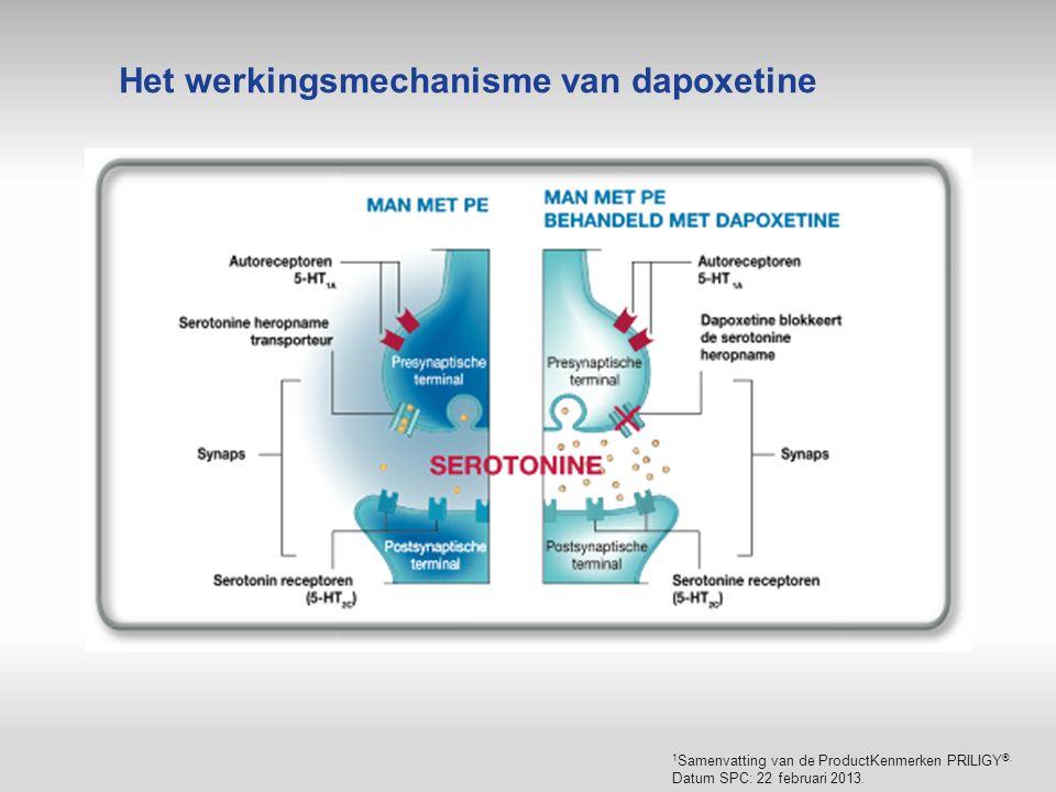 Het werkingsmechanisme van dapoxetine