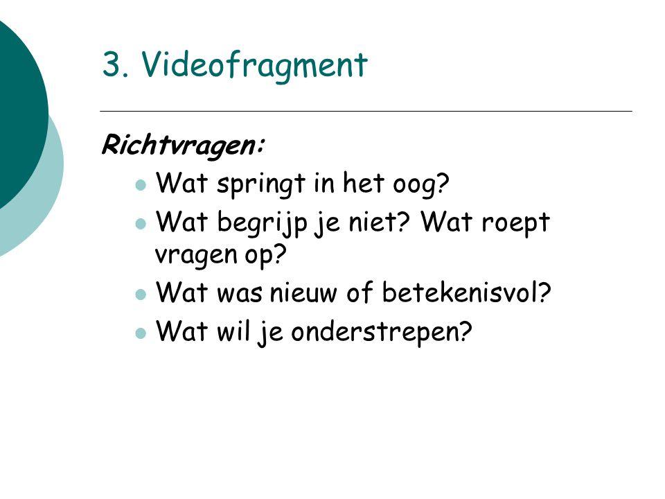 3. Videofragment Richtvragen: Wat springt in het oog