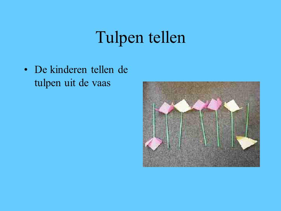 Tulpen tellen De kinderen tellen de tulpen uit de vaas