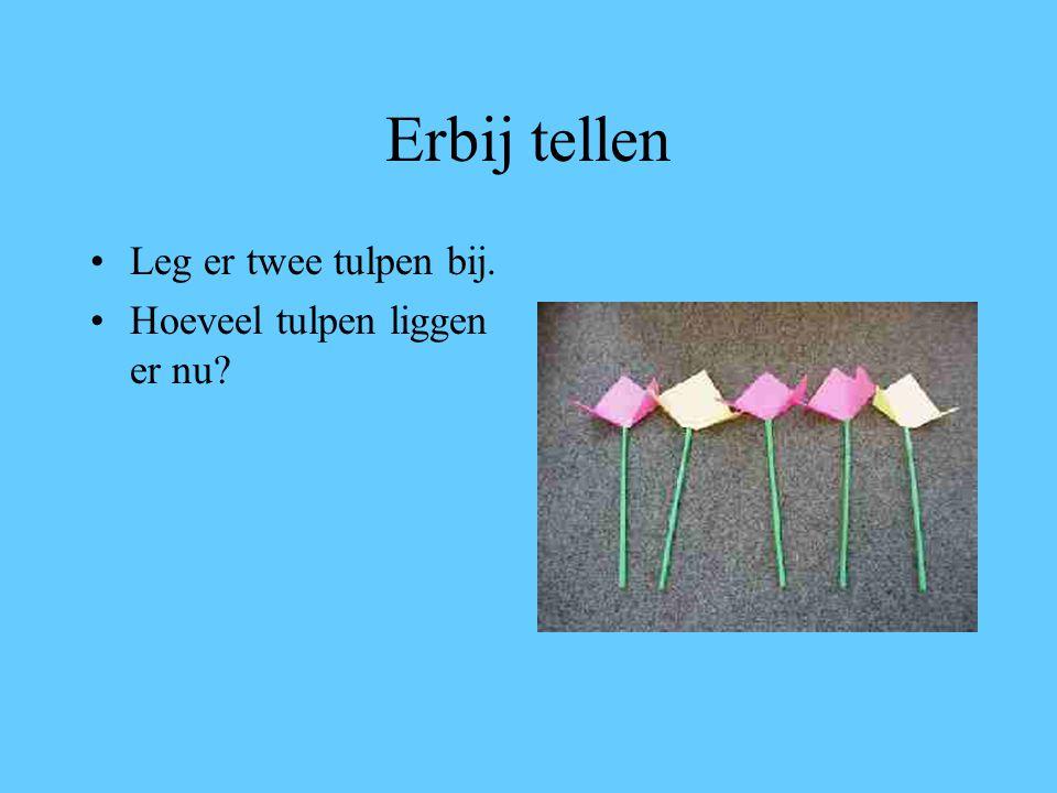 Erbij tellen Leg er twee tulpen bij. Hoeveel tulpen liggen er nu