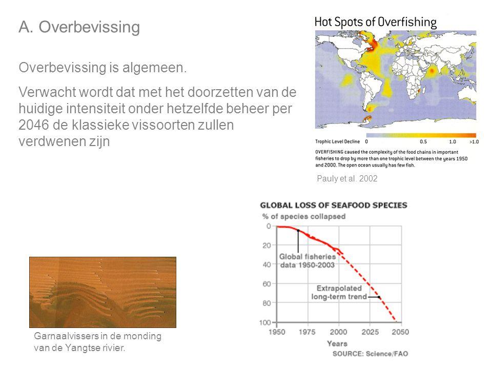 A. Overbevissing Overbevissing is algemeen.