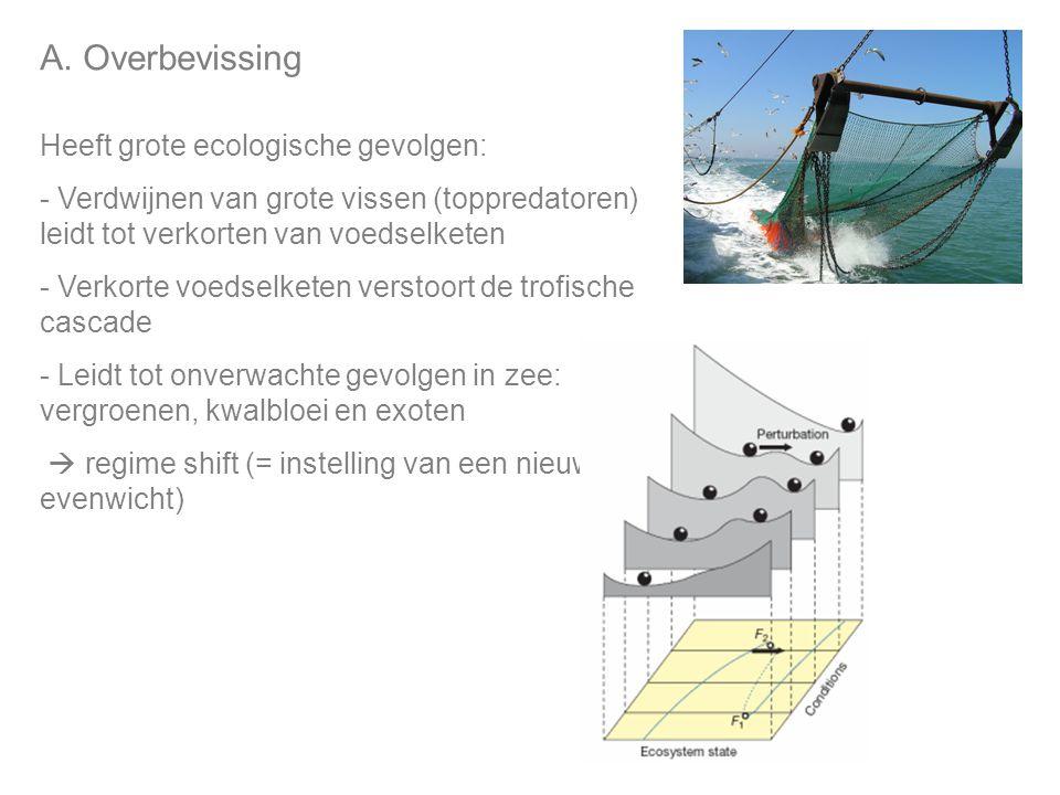 A. Overbevissing Heeft grote ecologische gevolgen: