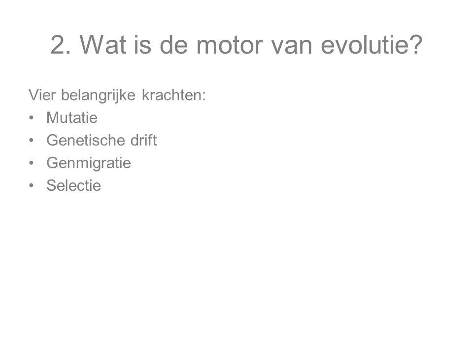 2. Wat is de motor van evolutie