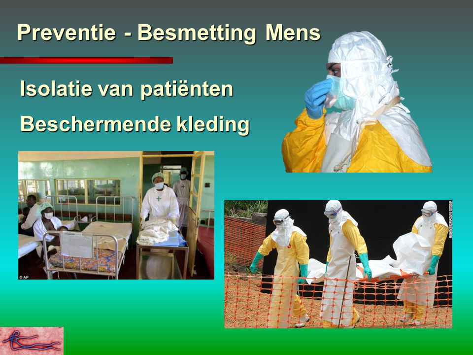 Preventie - Besmetting Mens
