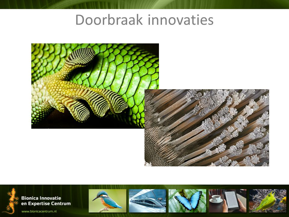 Doorbraak innovaties