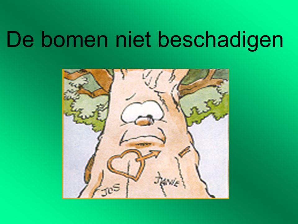 De bomen niet beschadigen