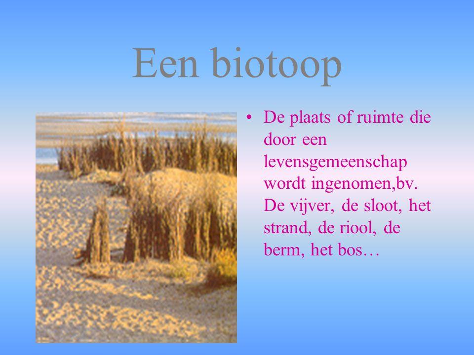 Een biotoop De plaats of ruimte die door een levensgemeenschap wordt ingenomen,bv.