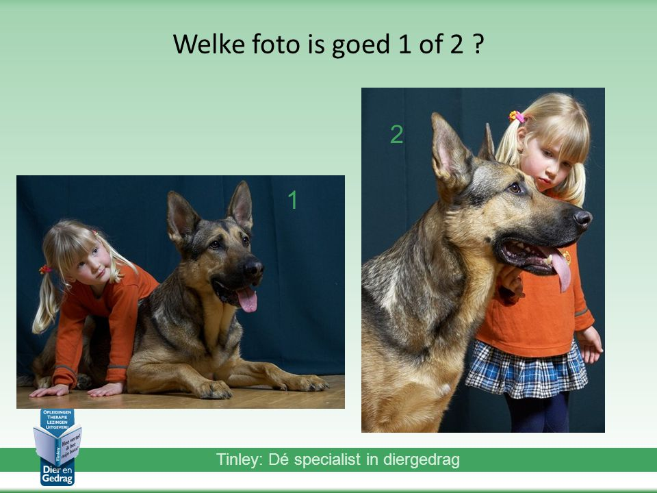 Welke foto is goed 1 of 2 2 1