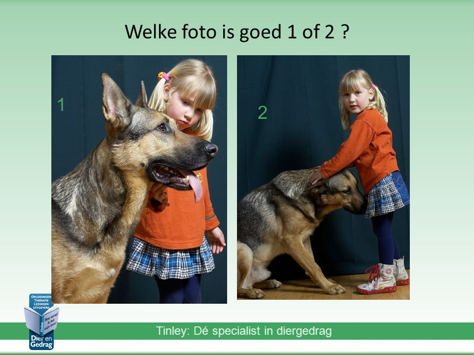 Welke foto is goed 1 of 2 1 2 2