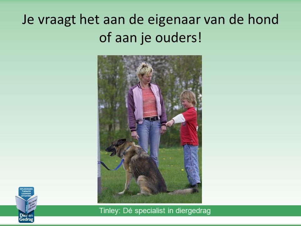 Je vraagt het aan de eigenaar van de hond of aan je ouders!
