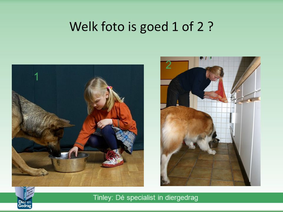 Welk foto is goed 1 of 2 2 1