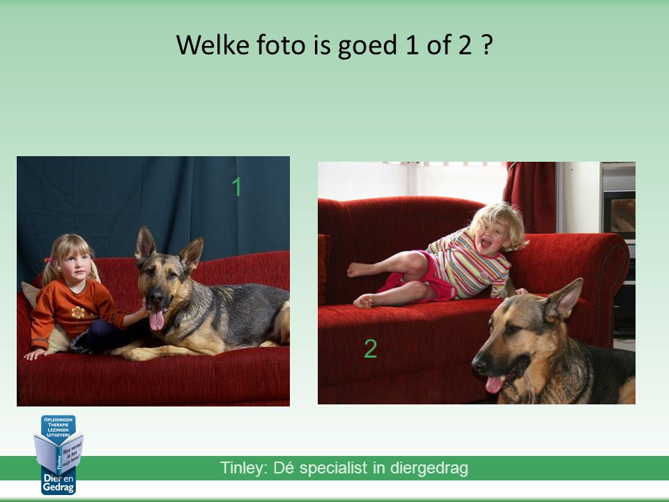 Welke foto is goed 1 of 2 1 2