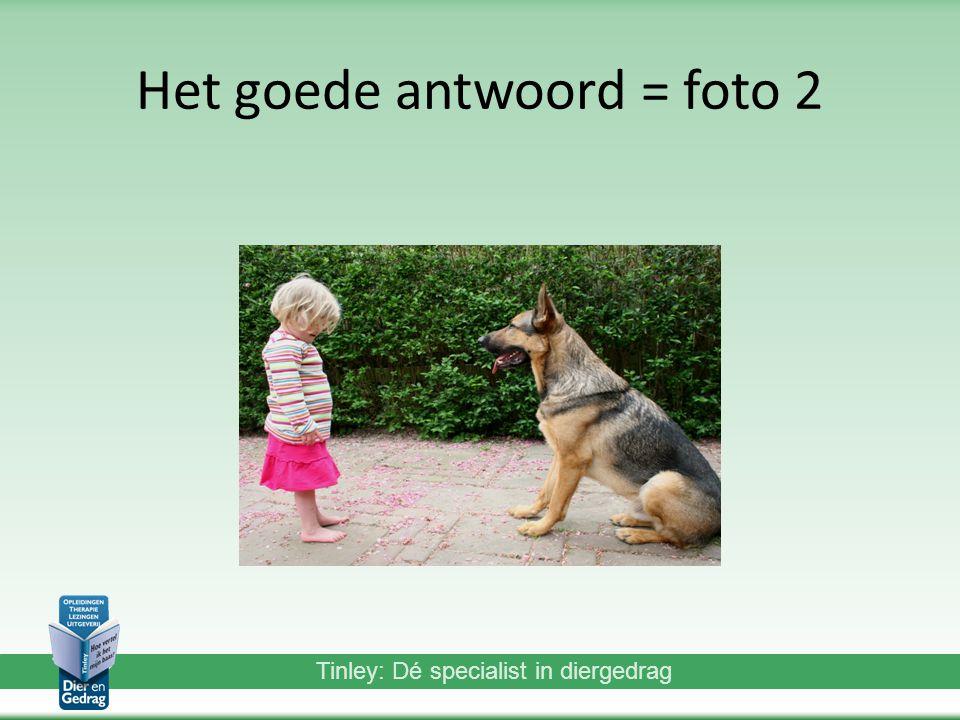 Het goede antwoord = foto 2