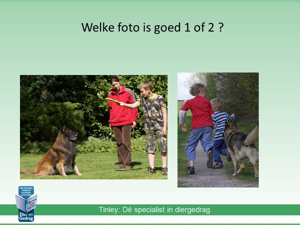 Welke foto is goed 1 of 2