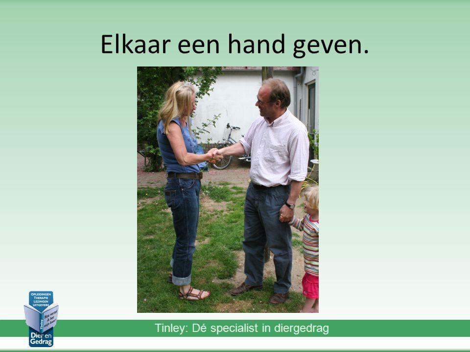 Elkaar een hand geven.