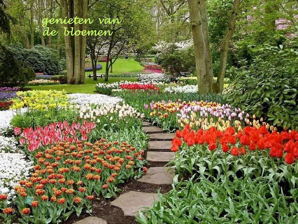 - genieten van de bloemen