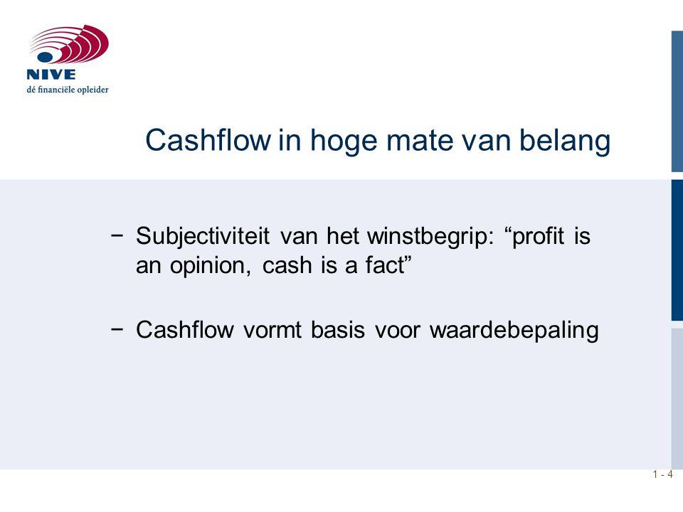 Cashflow in hoge mate van belang
