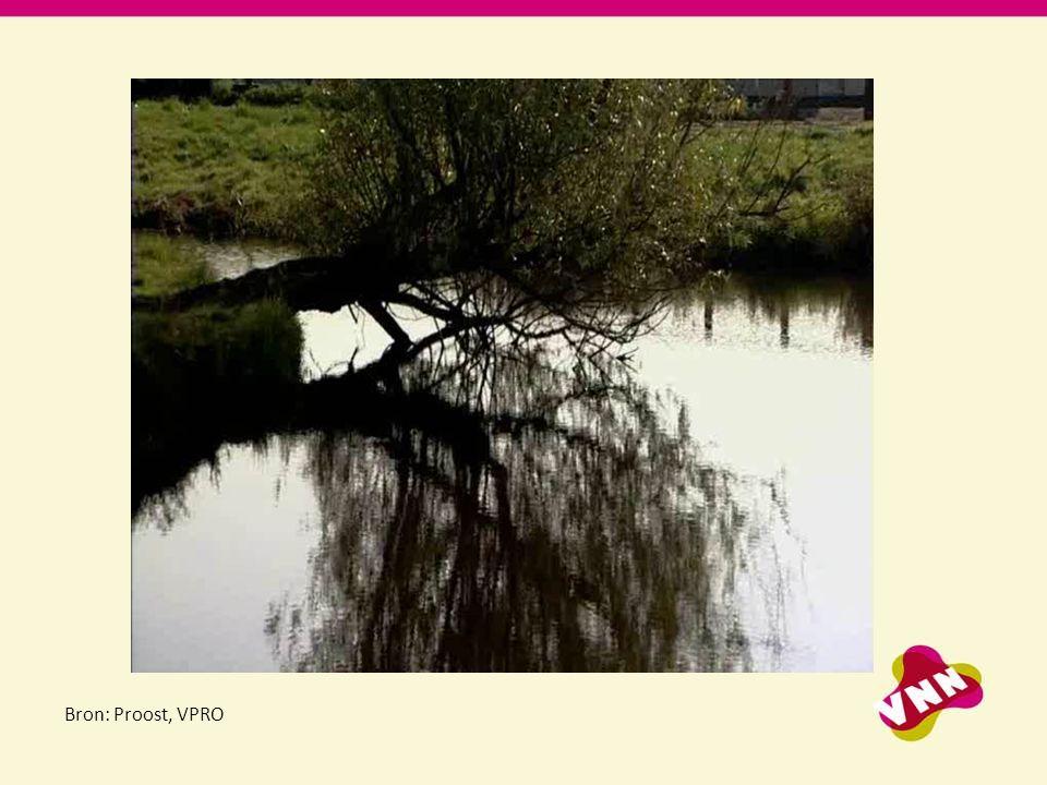 Bron: Proost, VPRO Dia 2 Openingsfilm: een fragment van Draadstaal.