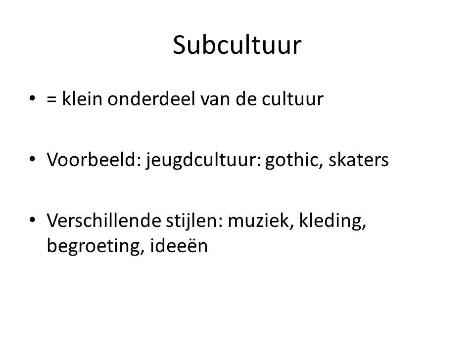 Subcultuur = klein onderdeel van de cultuur