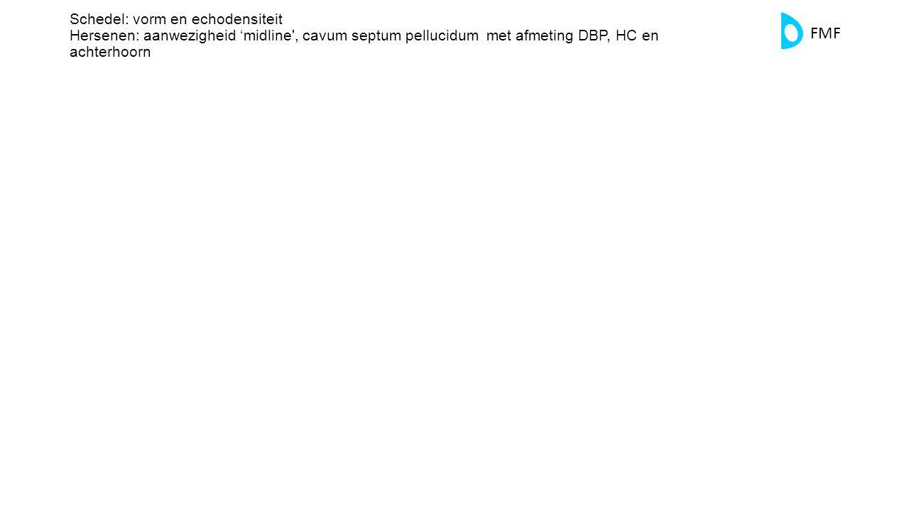 Schedel: vorm en echodensiteit Hersenen: aanwezigheid 'midline , cavum septum pellucidum met afmeting DBP, HC en achterhoorn