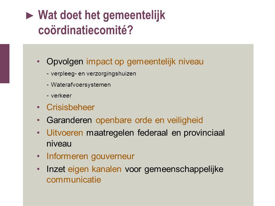 Wat doet het gemeentelijk coördinatiecomité