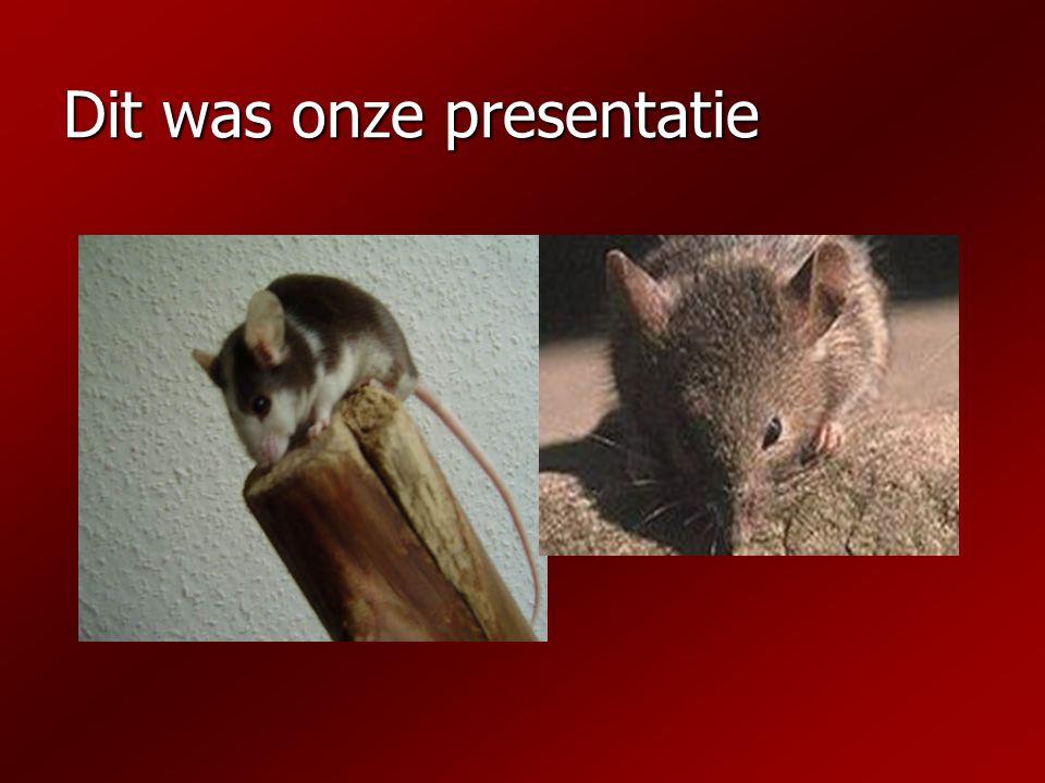 Dit was onze presentatie