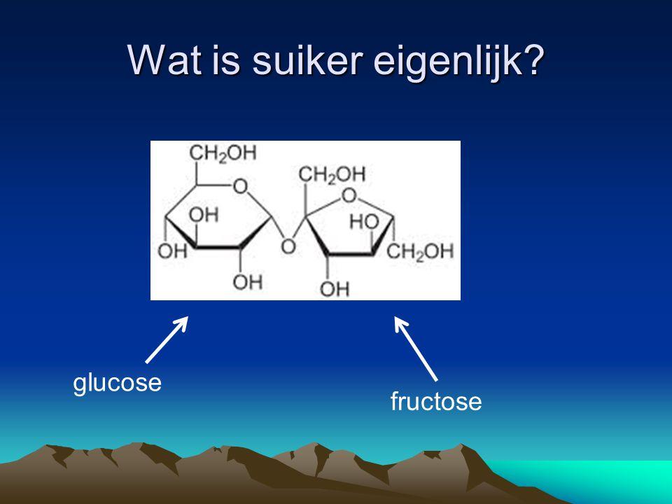 Wat is suiker eigenlijk