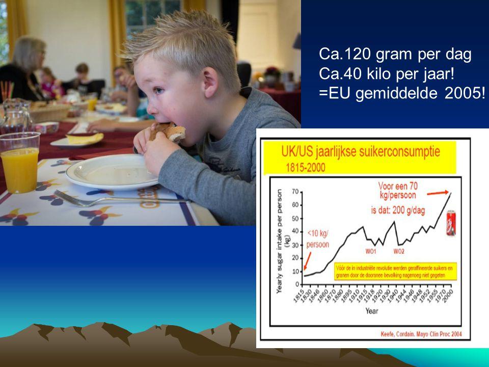 Ca.120 gram per dag Ca.40 kilo per jaar! =EU gemiddelde 2005!