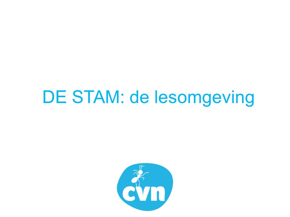 DE STAM: de lesomgeving