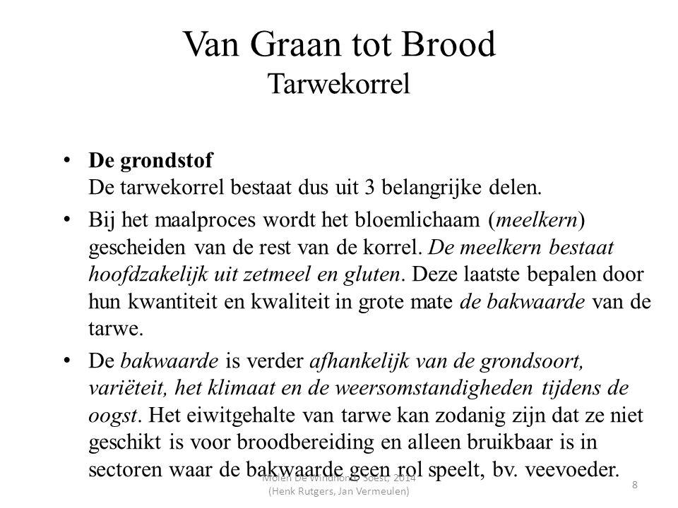 Van Graan tot Brood Tarwekorrel
