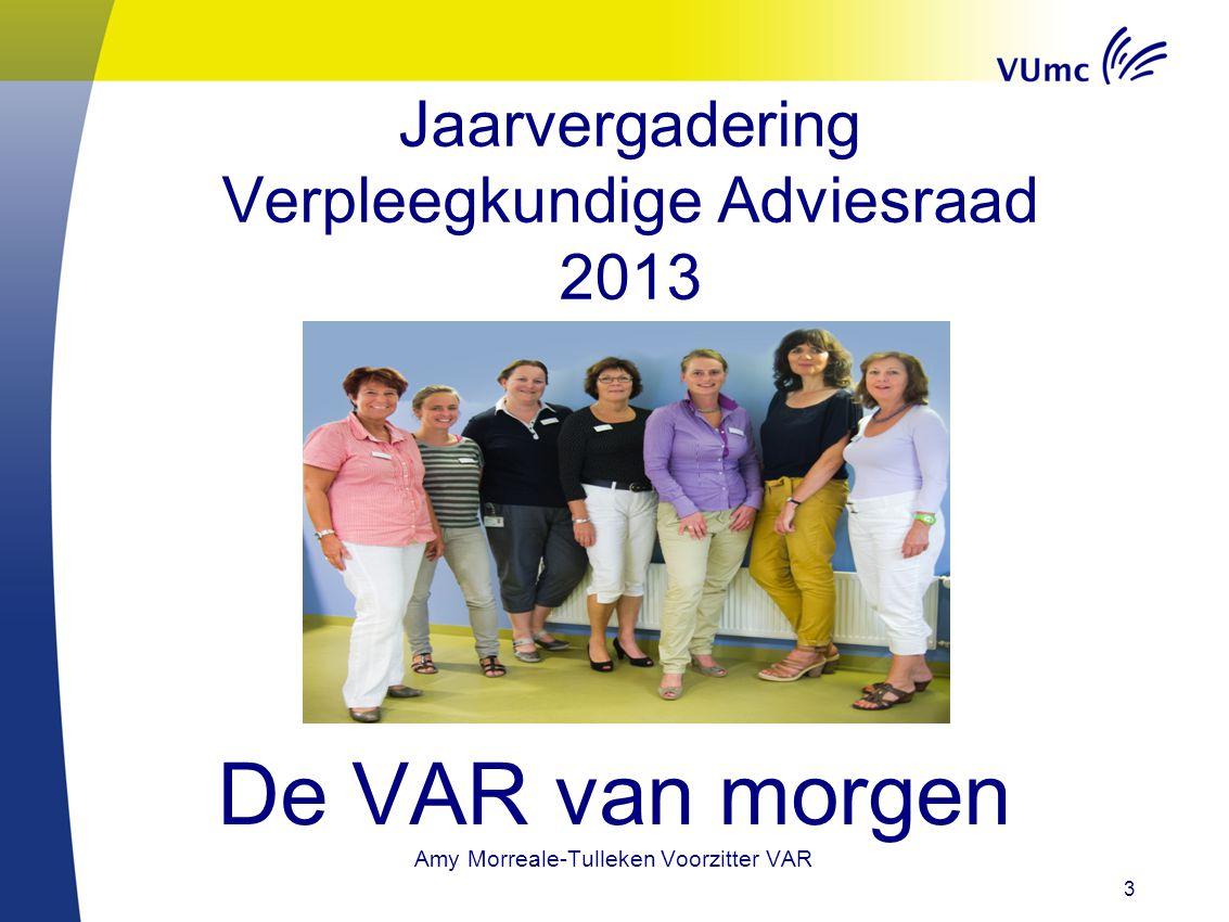 Jaarvergadering Verpleegkundige Adviesraad 2013