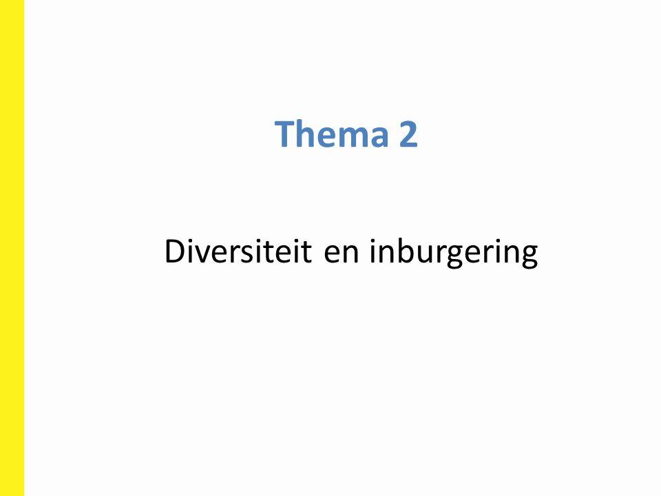 Diversiteit en inburgering
