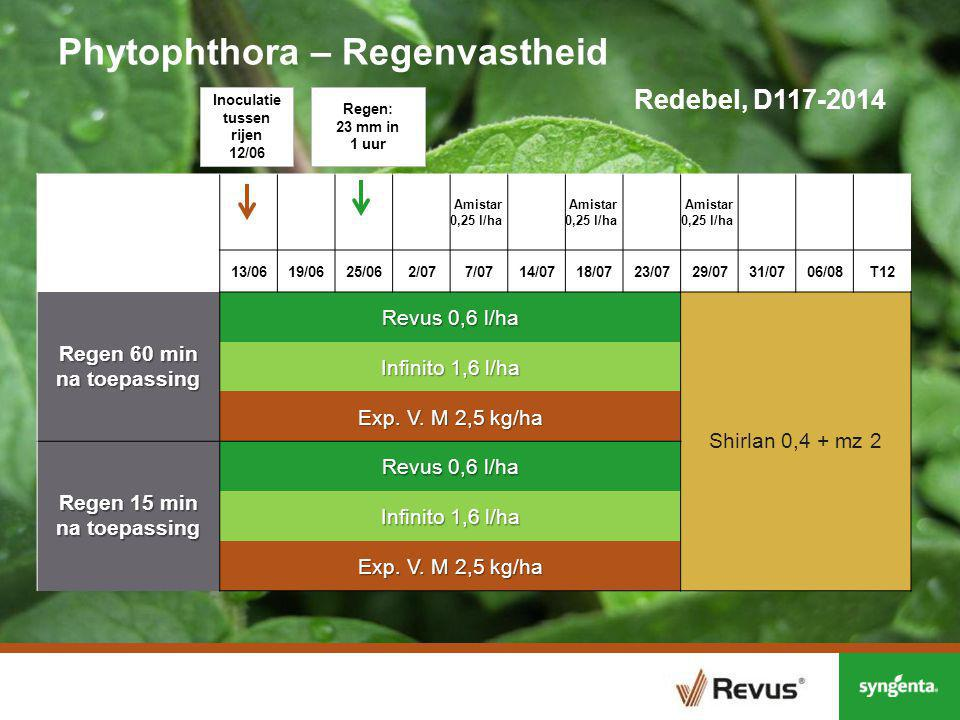 Phytophthora – Regenvastheid Redebel, D117-2014