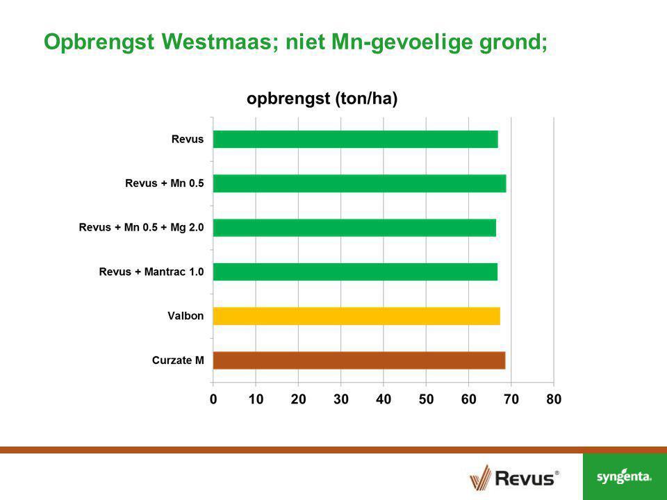Opbrengst Westmaas; niet Mn-gevoelige grond;