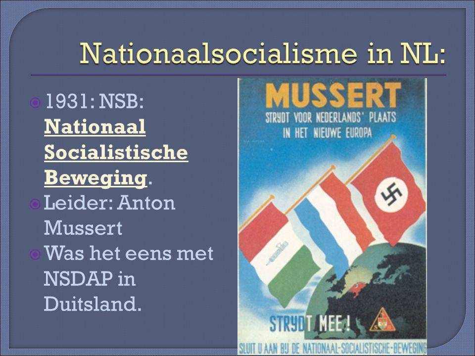 Nationaalsocialisme in NL: