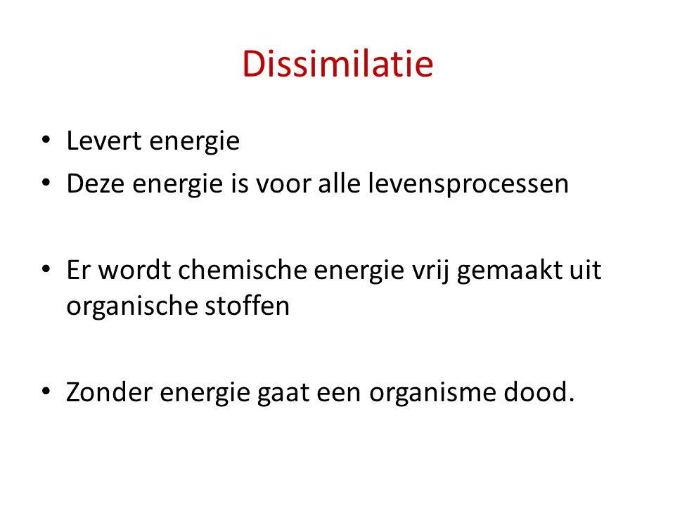 Dissimilatie Levert energie Deze energie is voor alle levensprocessen